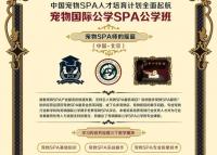 据说宠物国际工学SPA公学班即将在北京开办了!