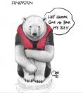北极熊的悲悸:我们没冰了!