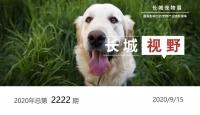 助推产业升级!2020首届鞍山全球宠物水族繁育峰会暨交易会开