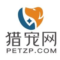 @宠业打工人 :2021你还会坚持做宠物行业吗?