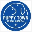 宁波市爱心宠物医院