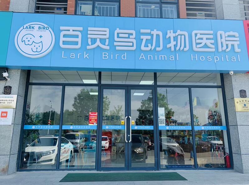 山东百灵鸟动物医院