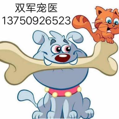 浙江金华双军宠物医院