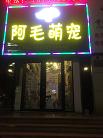烟台开发区阿毛萌宠部落