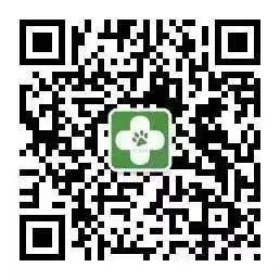 上海爱侣宠物医院爱其宠物诊所