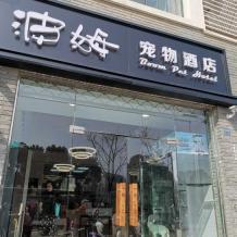江苏苏州波姆宠物
