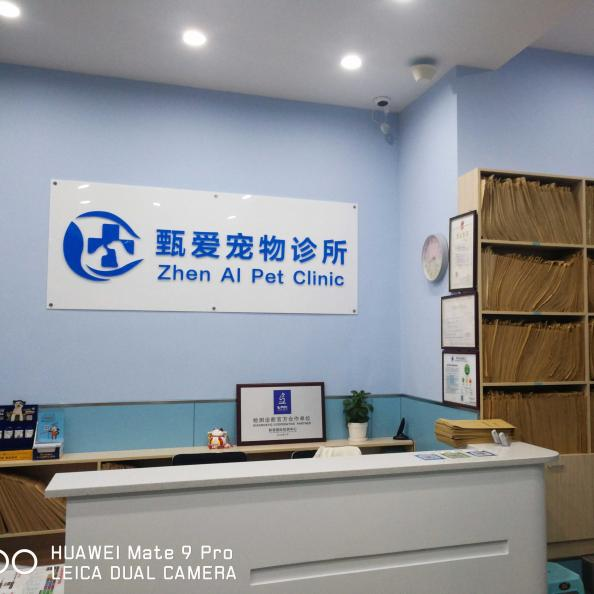 上海甄爱宠物诊所