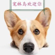 辽宁宠林岛宠物俱乐部有限公司