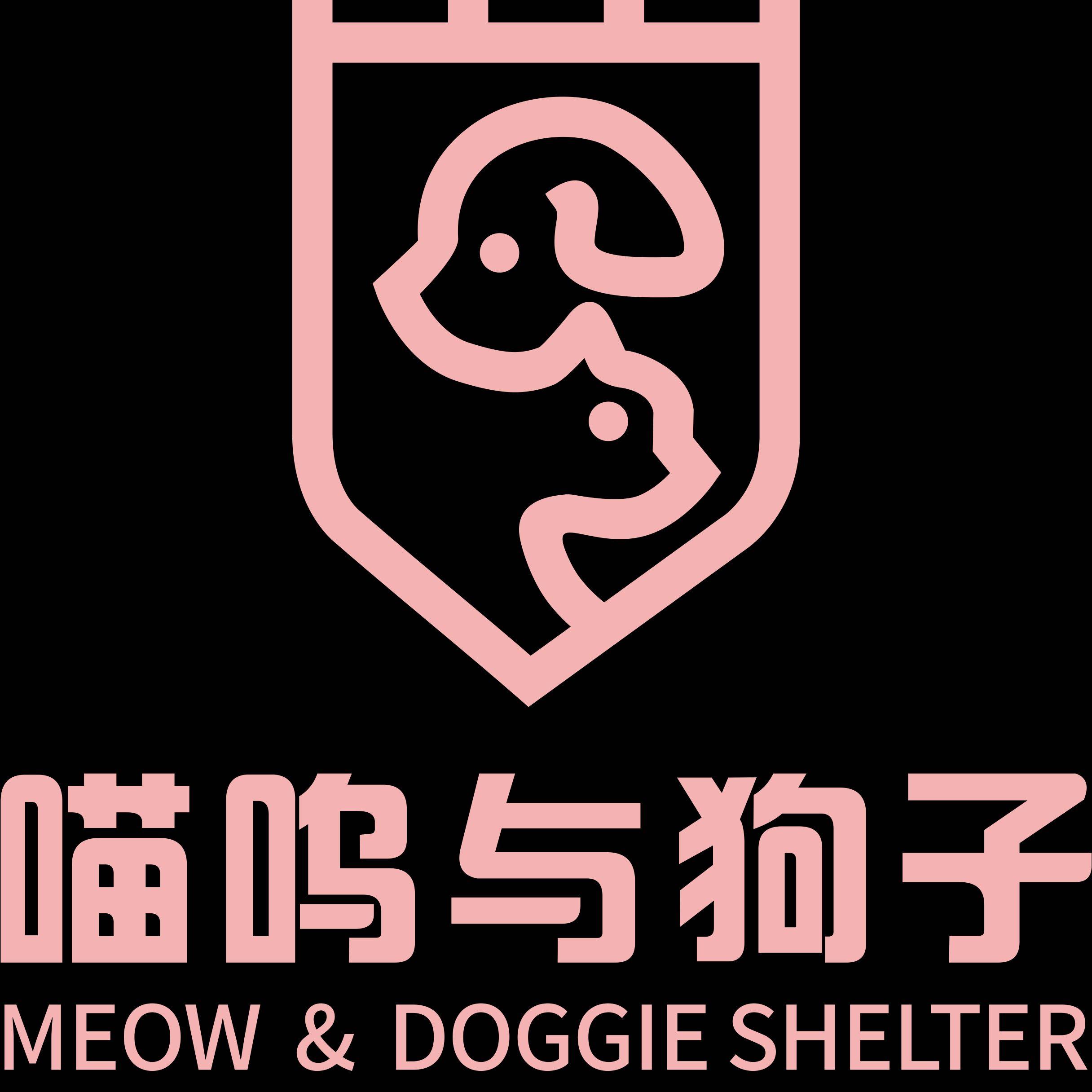 喵呜与狗子致力于做阜阳宠物酒店领导者