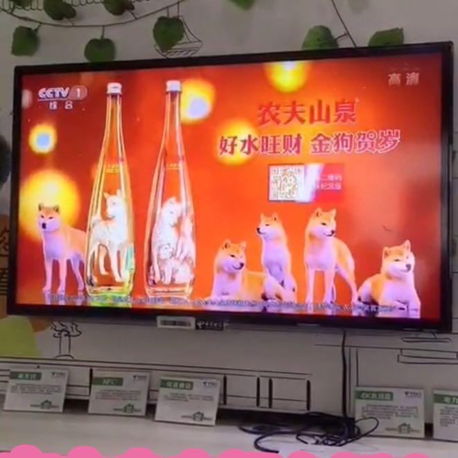 苏州连锁孙亮星宠物服务有限公司