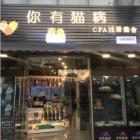 上海浦东你有猫病