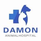 深圳大芊动物医院