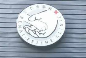 杭州仁爱猫科医院