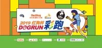 成都的狗爸狗妈看过来!2019红狗杯DOGRUN彩跑成都站炫酷来袭!
